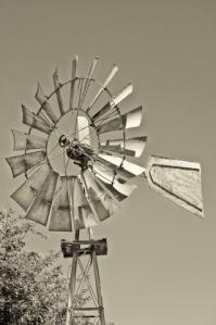 The Wind Music www.hispasturepress.com
