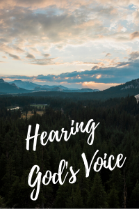 www.hispasturepress.com hearing god's voice